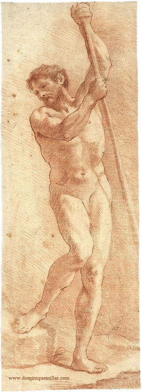Dominique Millar's Collection, Male Nude, Red Chalk